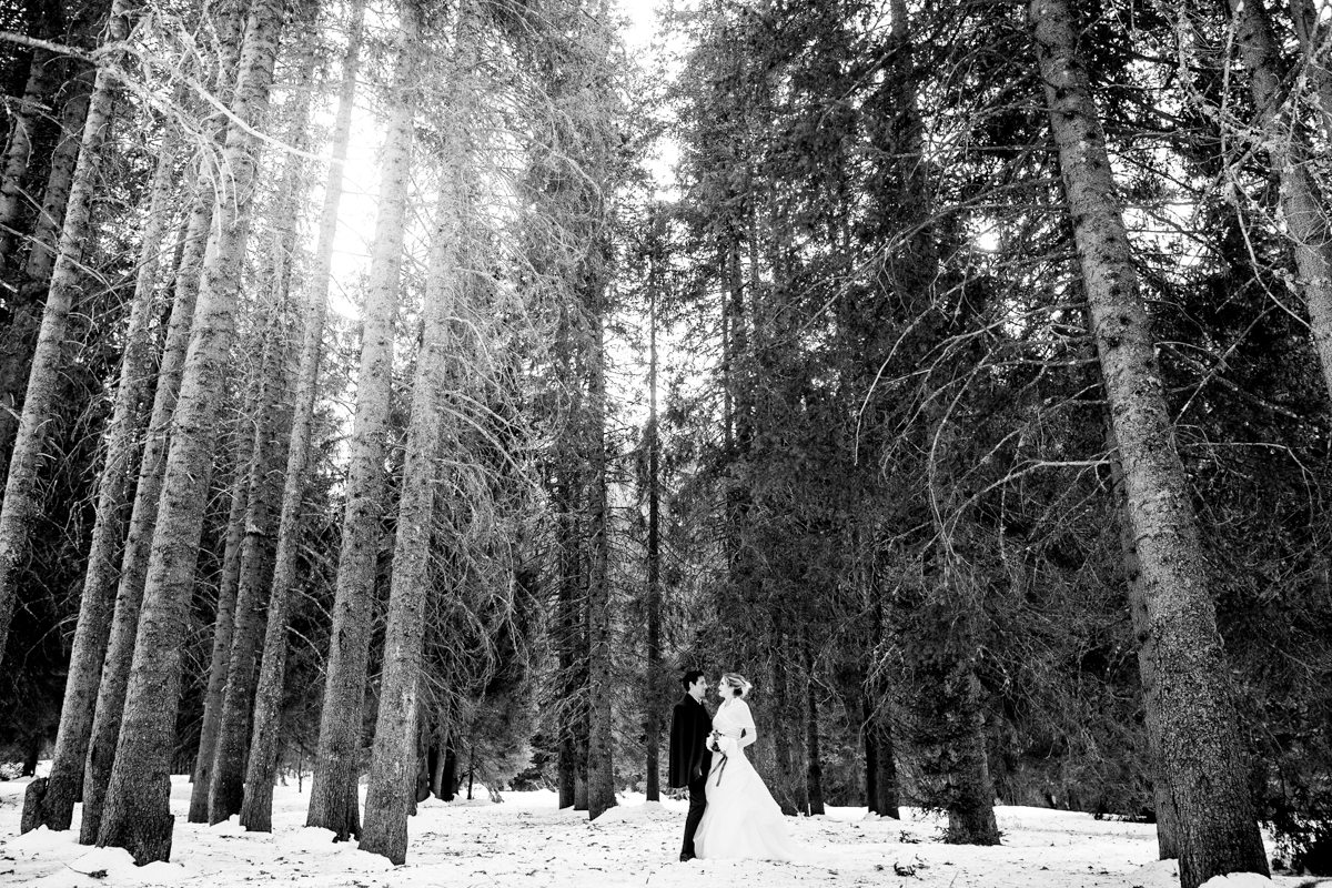 wedding in the mountains on the snow